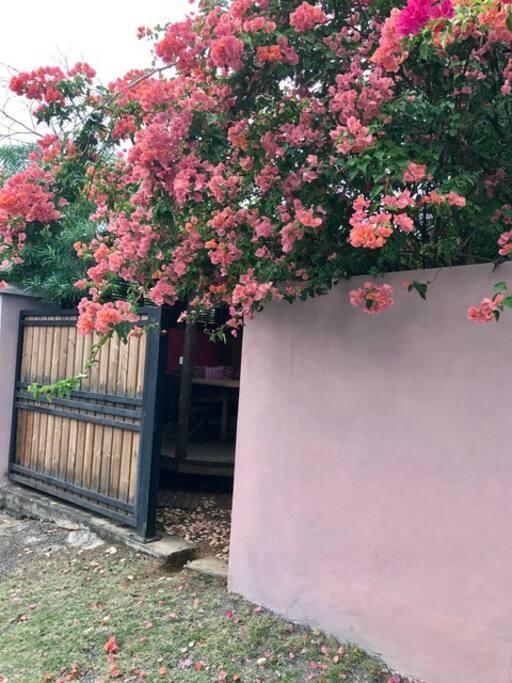 Entrée privée du bungalow