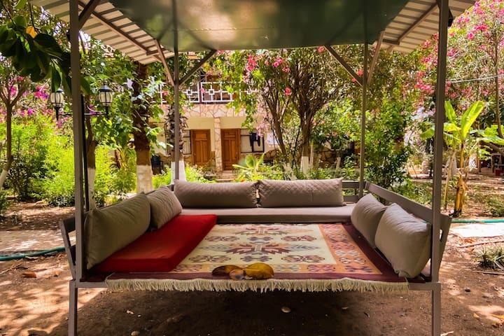 3) Cozy room next to the sea +organic breakfast