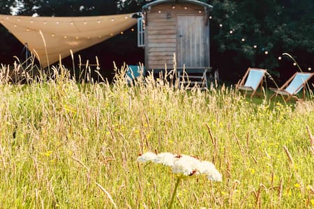 Shepherd hut & wood-fired hot tub in flower meadow