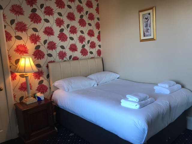 Edinburgh Alexander guest house .double room