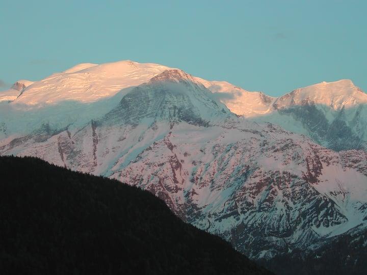 Appartement dans chalet typique face au Mont-Blanc