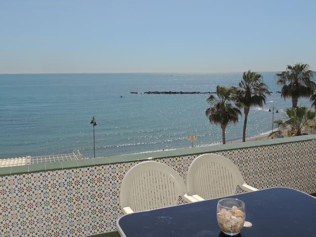 Las gaviotas frente al mar, espectaculares vistas