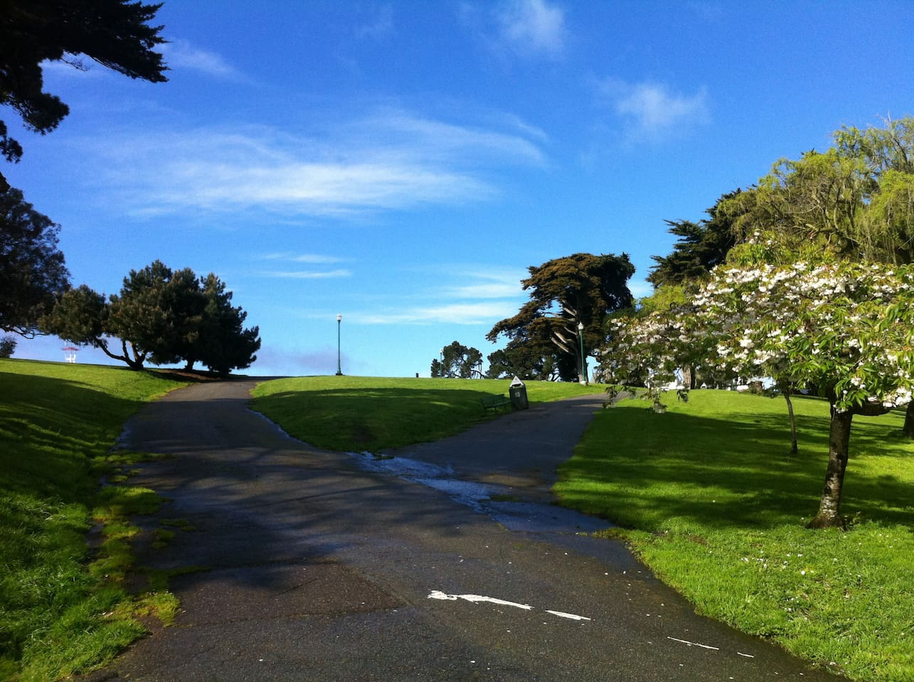 A beautiful Spring day after a passing rain shower in Alamo Square. The park is just a block away from our house.