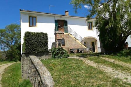 Agriturismo La Ciava (Il Girasole) - Chiusdino SIENA - 公寓