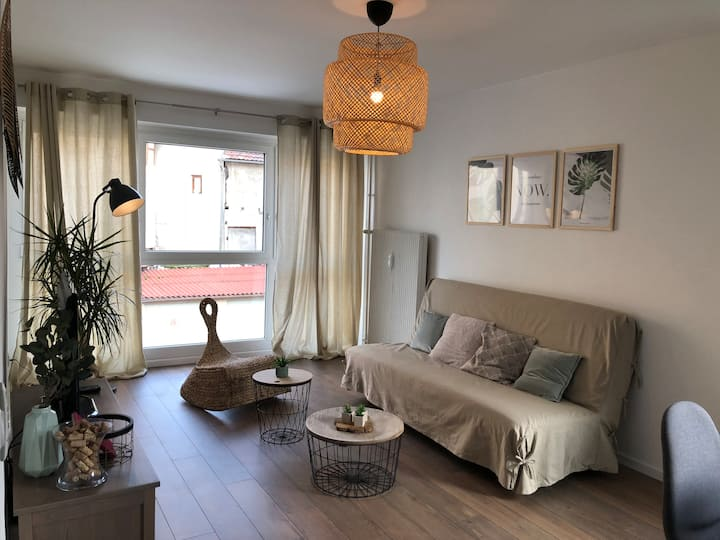 Fully furnished apartment close to Basel