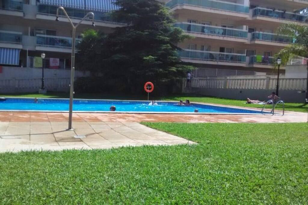 Zona comunitaria con dos piscinas, una grande y una infantil, rodeada de césped