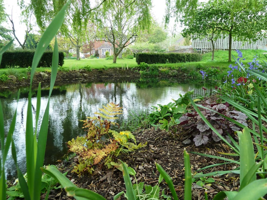 Sit and relax by the pond while listening to the birdsong and watching the sun go down.