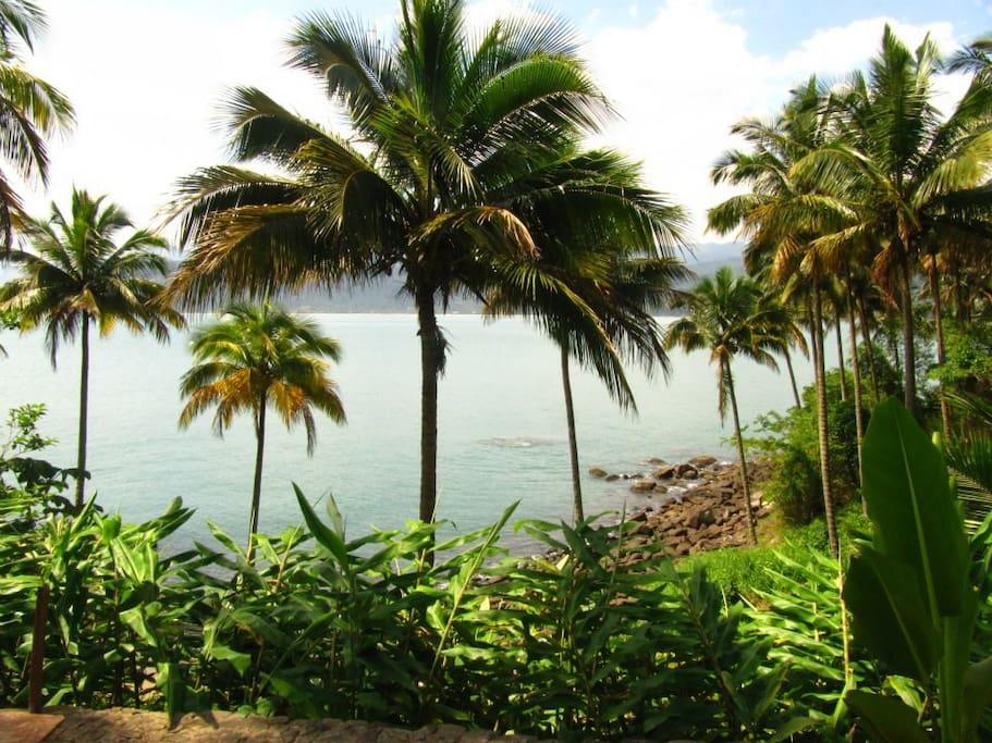 Vista da ilha para o continente.