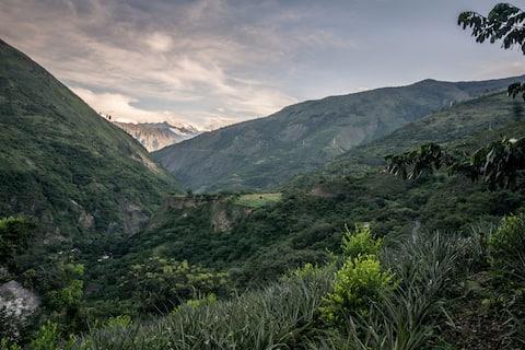Ceja de selva cerca Machupicchu 3
