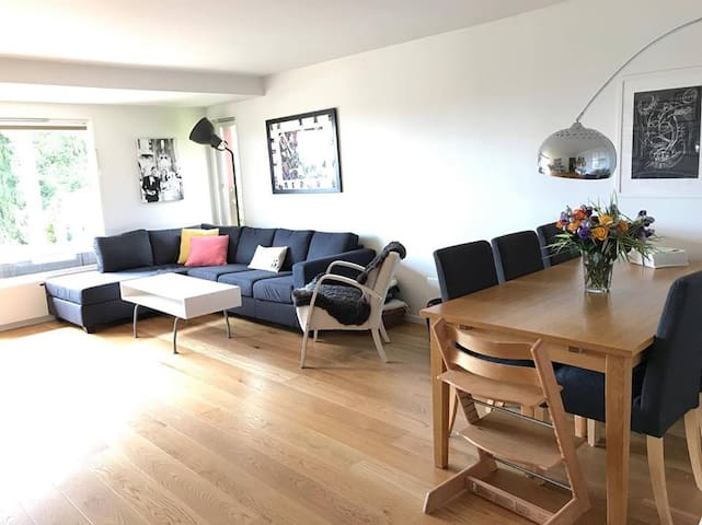 Spacious appartment with two bedroom and terrace.