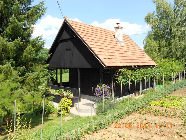 Cottage from the back with seasonal garden