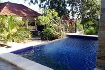 Om Shanti Pool