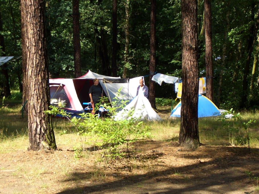 Weitläufiges Gelände ohne Parzellen! Camping pur.