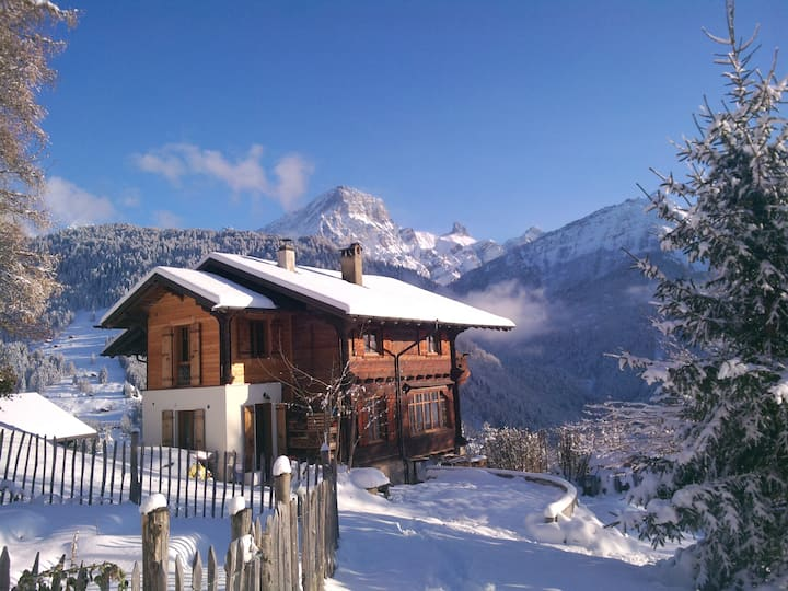 Wonderfull Swiss Chalet in Villars