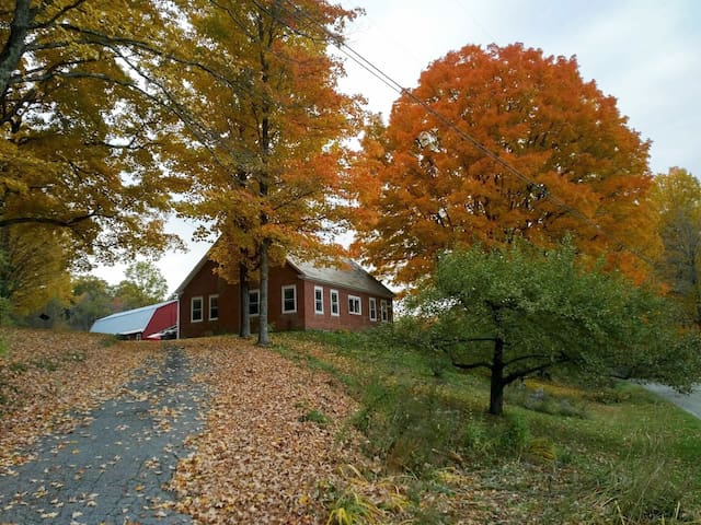 Beautiful Apple Orchard Farm - Hartland - Appartement