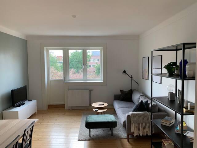 Koselig leilighet på Sandaker