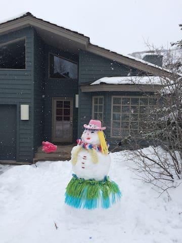Do you want to build a snowman? - Aspen - Huis