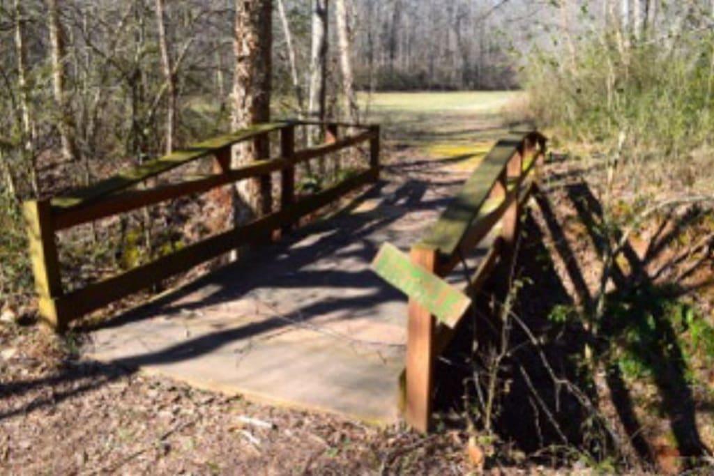 Rushing Creek near Tree House