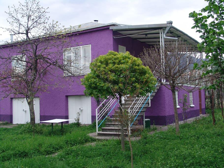 Двор нашего дома
