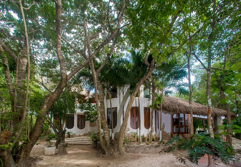 Villa natural villas for rent in alfredo v bonfil for Villas quintana roo