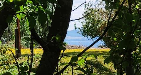 Lago Ranco vacaciones insolitas en cabaña Roulotte