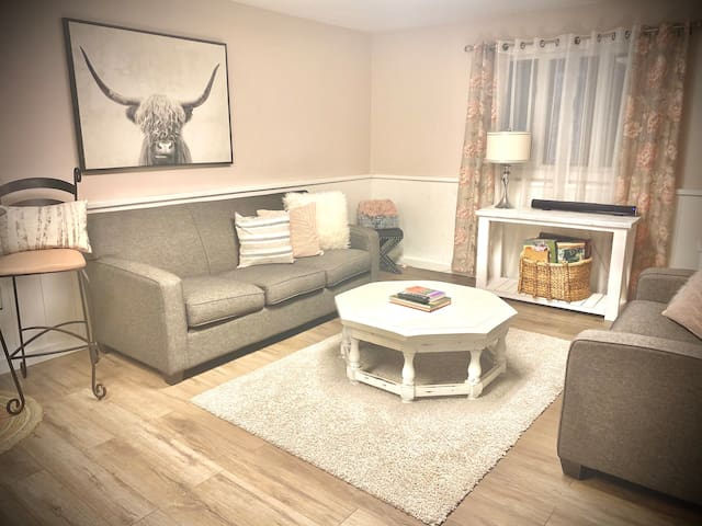 Private Living Room is Above Ground, With W/O to Wild Butterfly Garden & Plenty of Natural Light. A Couch & Loveseat Adorn the Space, High Top Table & Chairs, Electric Fireplace, Large TV, Games Basket, Bluetooth Speaker & Equipped Kitchenette Bar.
