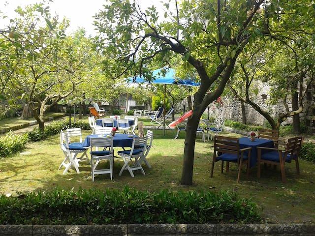 Villa con giardini a Carinola - Carinola - Villa