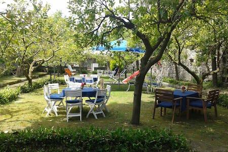 Villa con giardini a Carinola - Carinola - 別荘