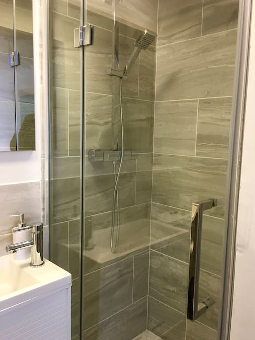 The contemporary ensuite shower room