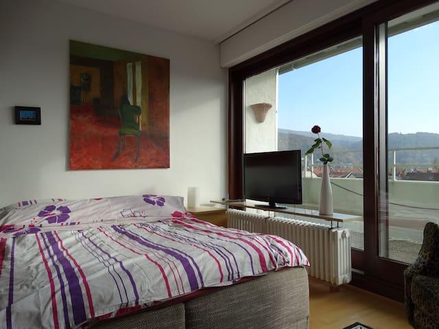 Zentral mit Schlossblick - Heidelberg - Apartament
