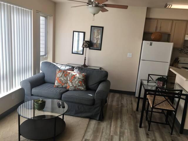 Furnished Studio Apartment Home