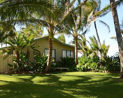 HMC Cottage II - Beach Hideaway - TVNC #1046