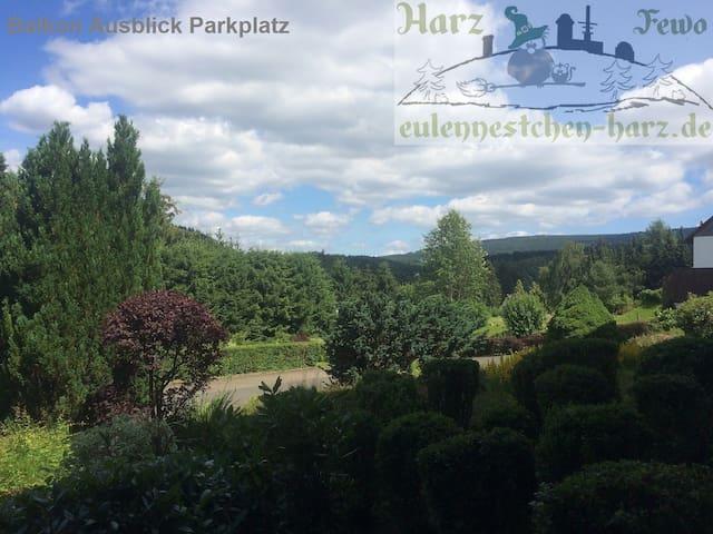 Harz*Fewo Eulennestchen S.1  * Altenau im Oberharz