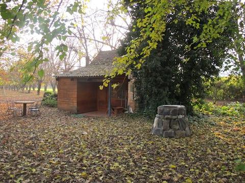 חווה של דני-בקתה משפחתית