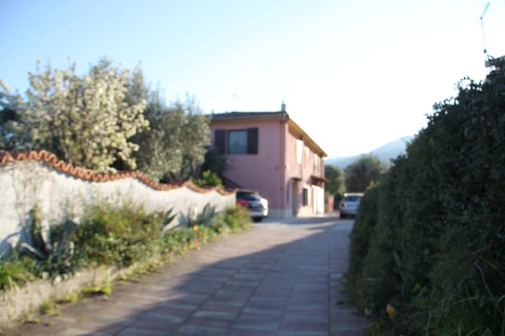 Part of a typical house - near SanTeodoro-12 B - Padru - Byt
