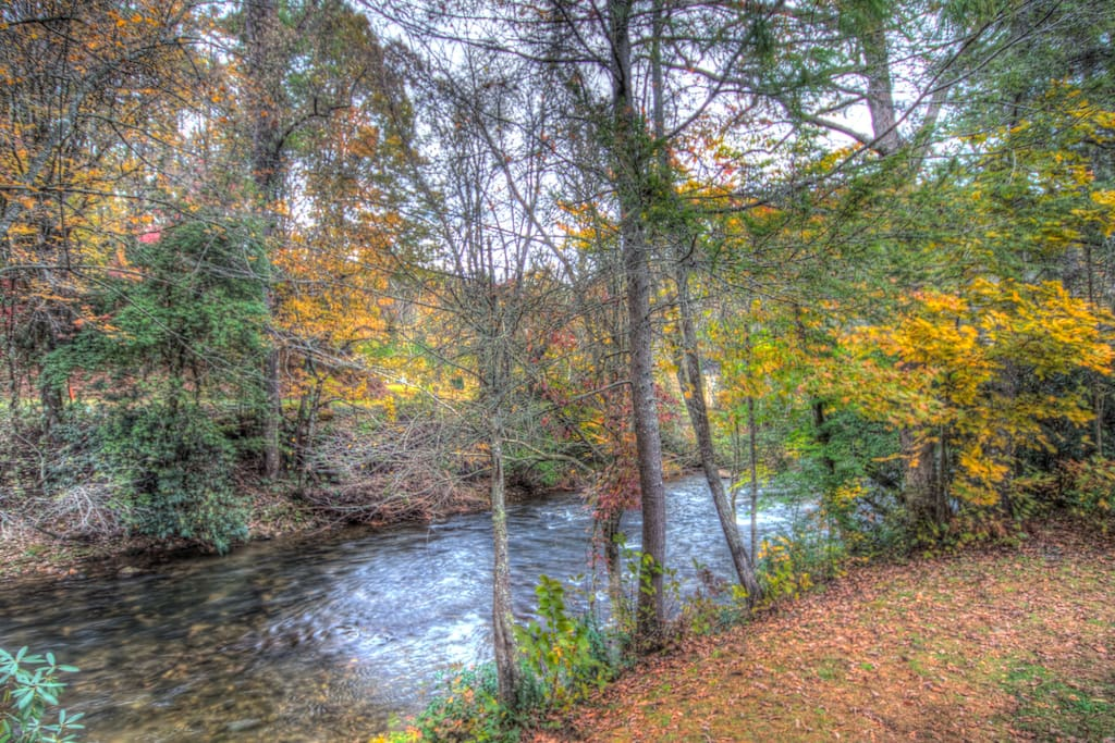 View of Creek with Fall Colors