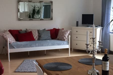 Brand new renovated appartement - Bammental - Apartament