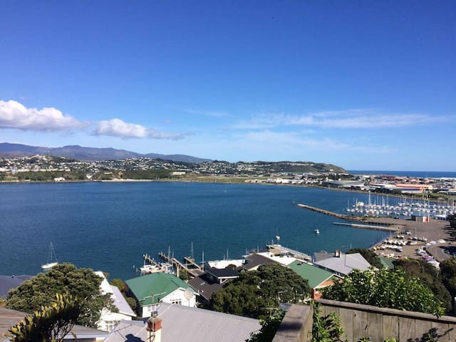 Master BR with Stunning Views,Close to City Centre - Wellington - House
