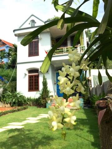 Cozy Mango Room in Gingerhomestay - tp. Hạ Long - Dom