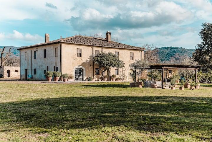 Villa nelle VIGNE di Bolgheri.