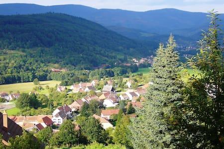 Chambres d'hôtes 4 Pers. verte vallée Alsace
