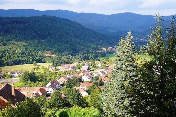 Chambres d'hôtes 5 Pers. verte vallée Alsace