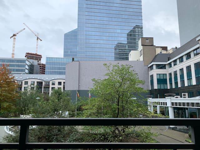 Appartement Centre De Bruxelles