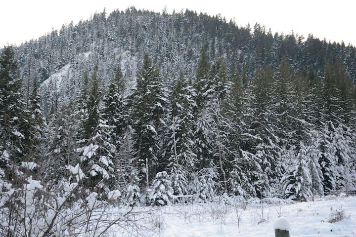 We get plenty of snow, creating a winter wonderland