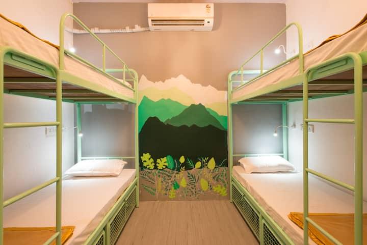 HOSTEL MANTRA (6-Bed Female Dorm)