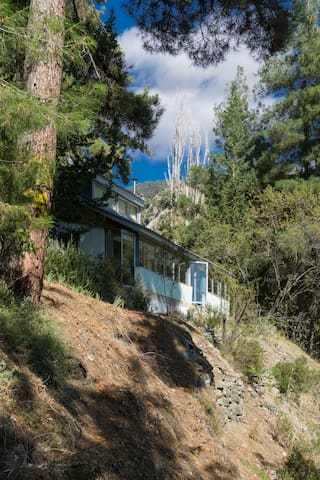 Tranquility in Troodos mountains - Pano Platres
