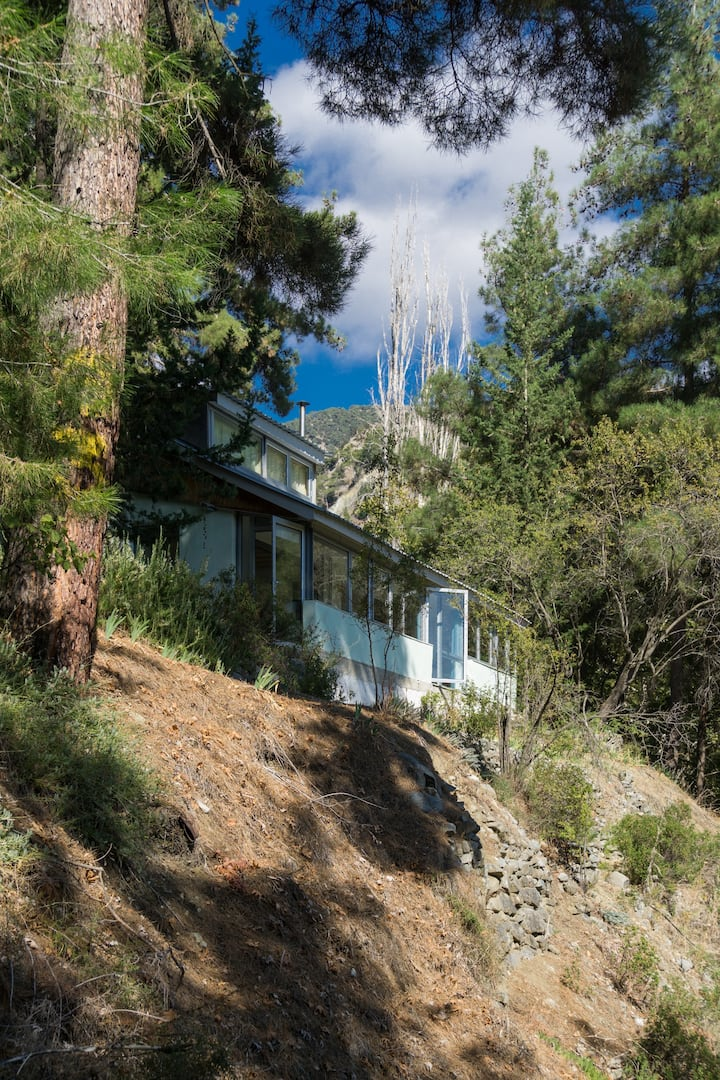 Tranquility in Troodos mountains
