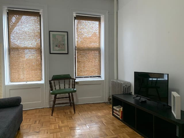 nice 1 bed apt in williamsburg close to everything