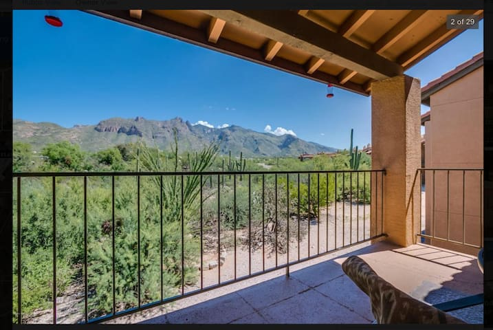 Foothills Condo with Amazing Mountain View