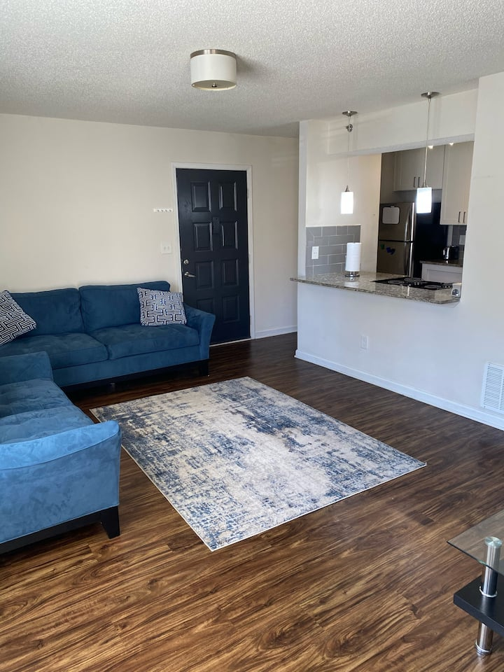 Single Bedroom Apartment near Braves Stadium